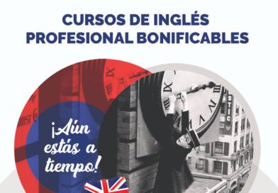 Oferta de cursos de Inglés Profesional Bonificables